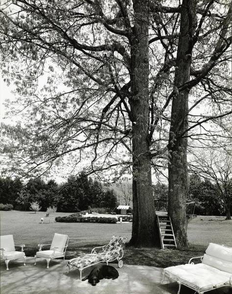 Patio Photograph - Terrace And Lawn Of Hickory Hill by Tom Leonard