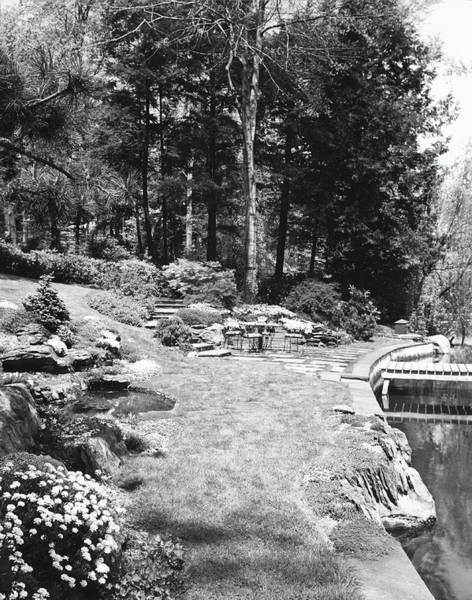 Shrub Photograph - Terrace By Lake by Tom Leonard