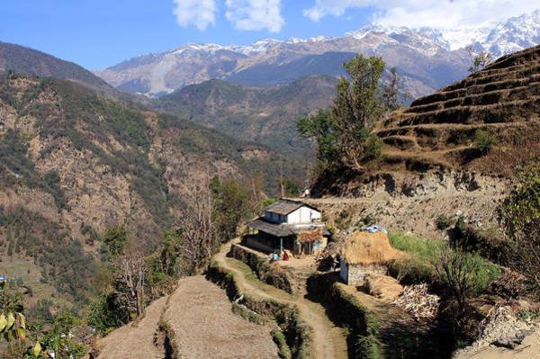 Photograph - Terraced Fields - Nepal by Aidan Moran