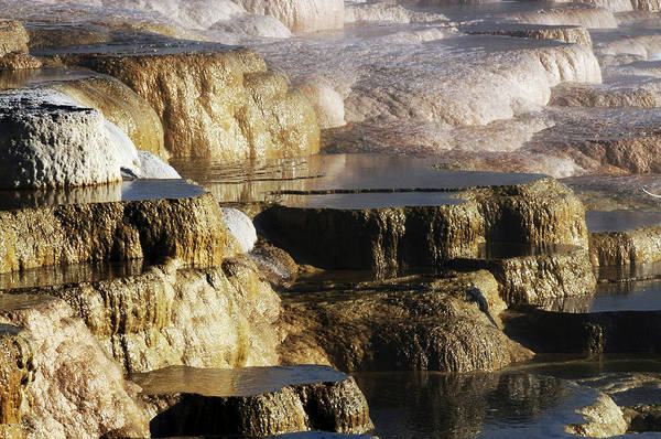 Deposits Wall Art - Photograph - Terraces, Mammoth Hot Springs by Michel Hersen
