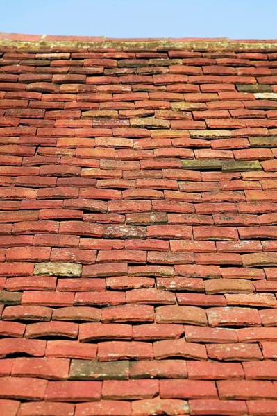 Wall Art - Photograph - Terracotta Roof Tiles by Gustoimages/science Photo Library