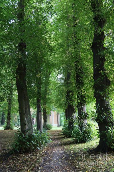 Photograph - Tervuren Chapel Path by Carol Groenen