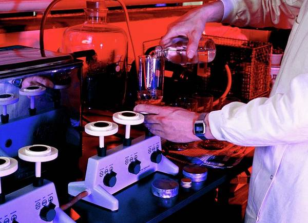 Public Health Photograph - Testing Water For Bacterial Contamination by Simon Fraser/science Photo Library