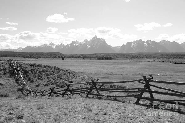 Photograph - Teton Landscape With Fence - Black And White by Carol Groenen