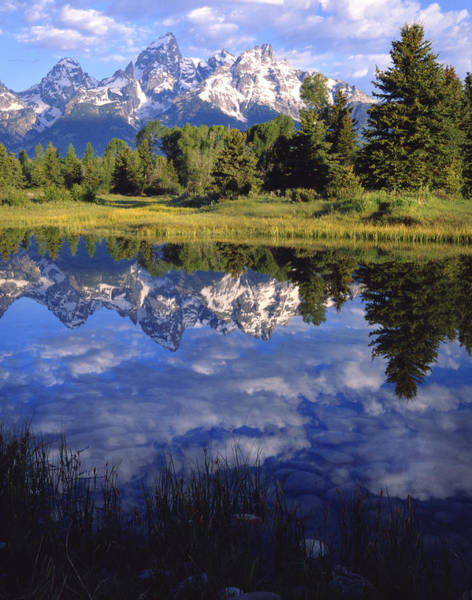 Photograph - Teton Mirror by Ray Mathis