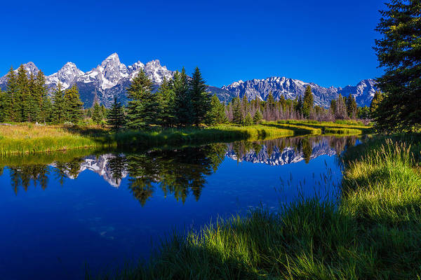 Grass Photograph - Teton Reflection by Chad Dutson