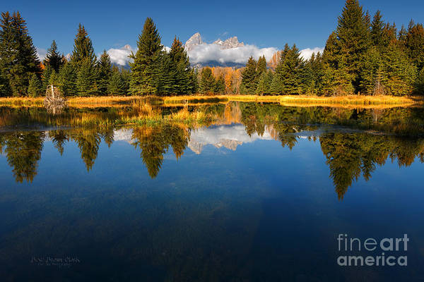 Photograph - Teton Reflections by Beve Brown-Clark Photography
