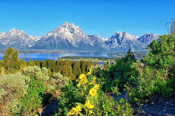 Photograph - Teton Spring From Signal Mtn Summit by Greg Norrell