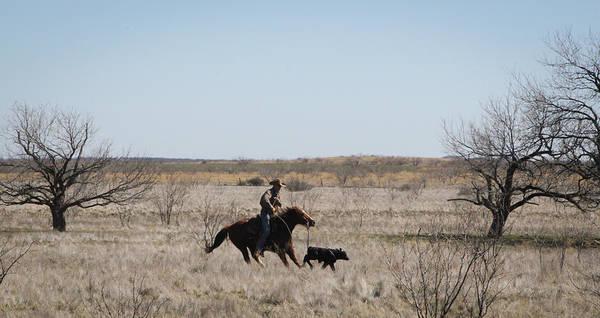 Photograph - Texas 3 by Diane Bohna