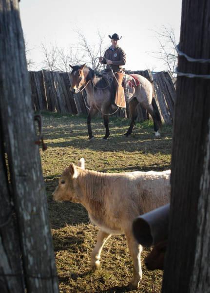 Photograph - Texas 31 by Diane Bohna