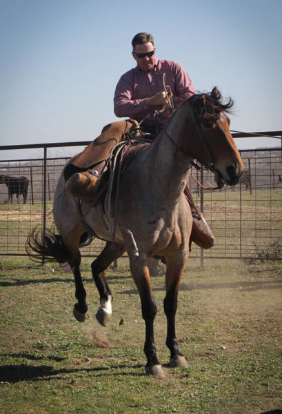 Photograph - Texas 38 by Diane Bohna