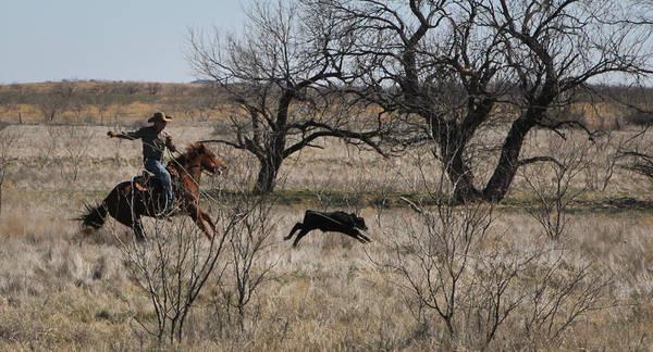 Photograph - Texas 5 by Diane Bohna