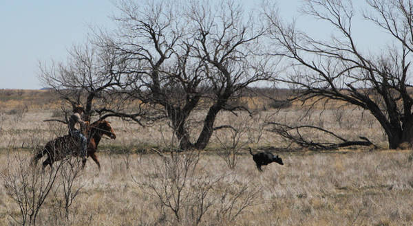 Photograph - Texas 7 by Diane Bohna