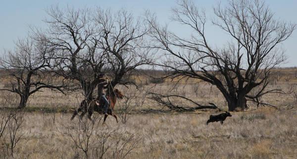 Photograph - Texas 8 by Diane Bohna