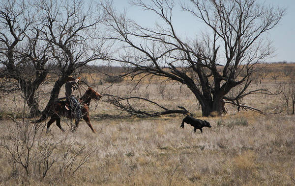 Photograph - Texas 9 by Diane Bohna