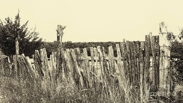 Boundary Digital Art - Texas Fence In Sepia by Luther Fine Art