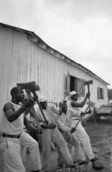Wall Art - Photograph - Texas Prisoners, 1934 by Granger