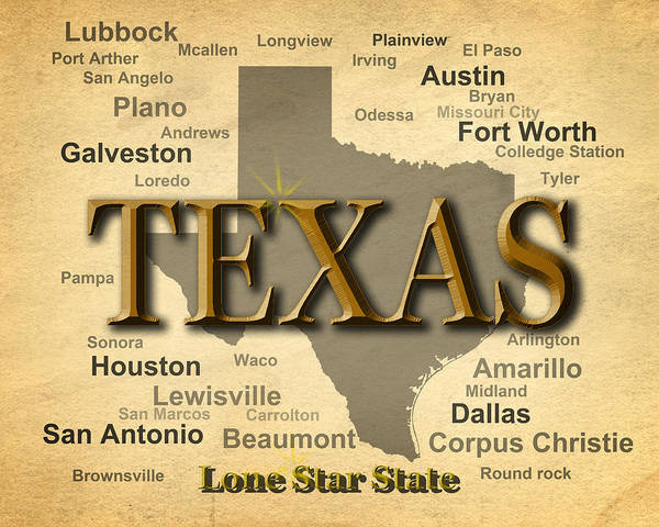 Wall Art - Photograph - Texas State Pride Map Silhouette  by Keith Webber Jr