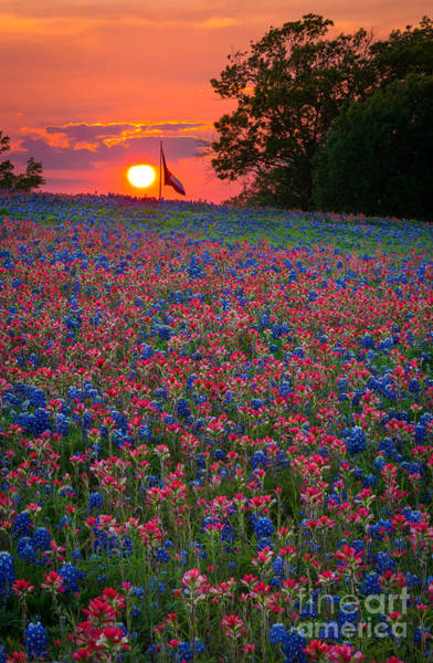 Expanse Photograph - Texas Sunset by Inge Johnsson