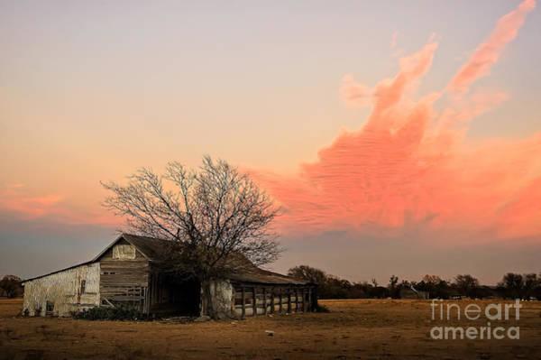 Photograph - Texas Sunset by Paul Quinn
