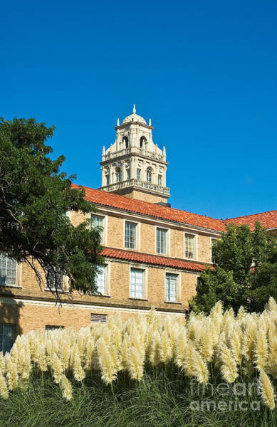 Photograph - Texas Tech Administration Building  by Mae Wertz