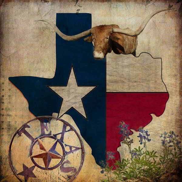 Longhorns Wall Art - Photograph - Texas by Terry Fleckney