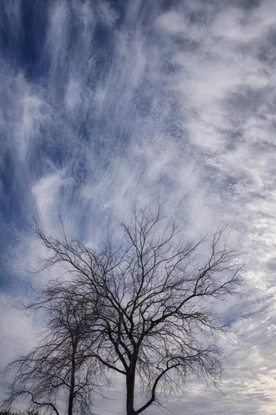 Photograph - Texas Winter Clouds by Joan Carroll