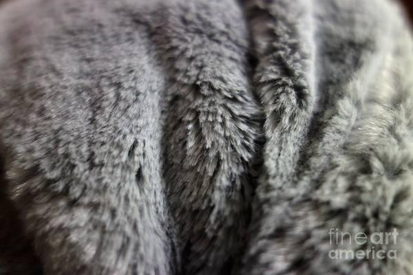 Photograph - Textures 8 by Jacqueline Athmann