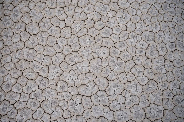 Photograph - Textures On The Playa by Dustin  LeFevre