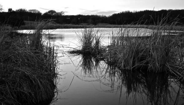 Photograph - Thackerville Pond 6589 by Ricardo J Ruiz de Porras