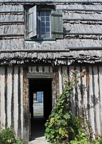 Michilimackinac Wall Art - Photograph - Thatched Roof Door Plant 2 by Mary Bedy