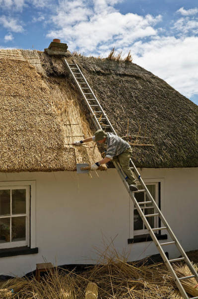 Dunmore East Photograph - Thatching A Cottage,dunmore East by Panoramic Images