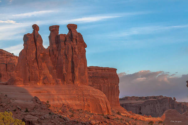 Wall Art - Photograph - The 3 Gossips  by Tim Bryan