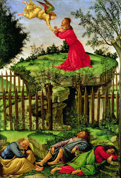Olives Photograph - The Agony In The Garden, C.1500 Oil On Canvas by Sandro Botticelli