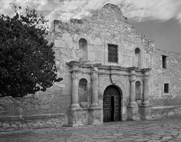 San Antonio Photograph - The Alamo by David and Carol Kelly