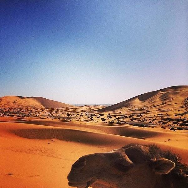 Japan Photograph - The #algeria #border In #sahara #desert by Ryoji Japan