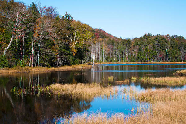 Fulton Chain Of Lakes Photograph - The Amazing Adirondacks by David Patterson