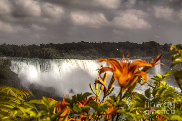 Photograph - The American Falls by Jim Lepard