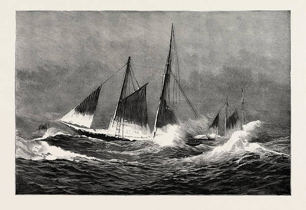 Stormy Drawing - The American Fisheries Question, Fishing Schooner Icing by American School
