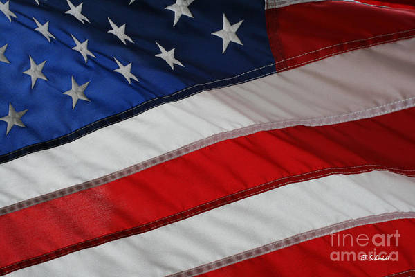 Photograph - The American Flag by E B Schmidt