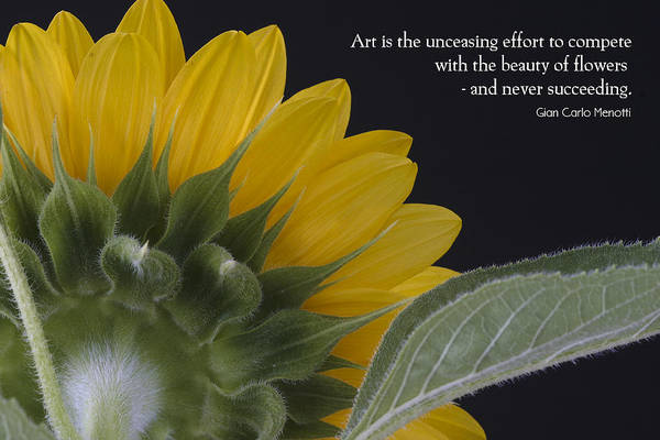 Inspirational Quote Photograph - The Art Of Nature by W Chris Fooshee