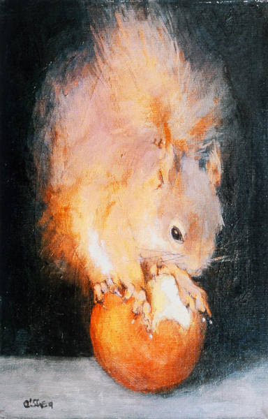 Red Squirrel Wall Art - Painting - The Balancing Act  by Ellie O Shea