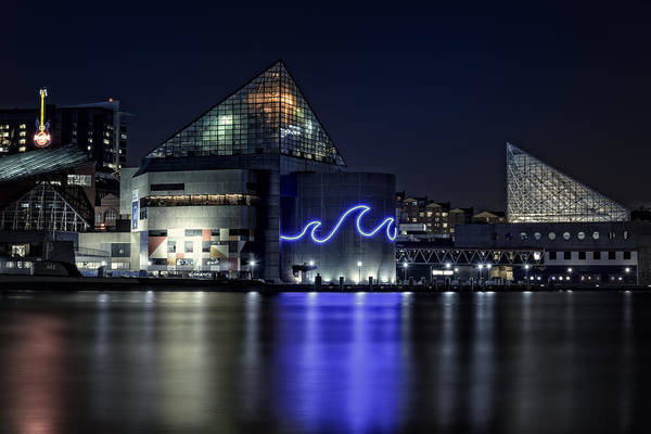 Baltimore Photograph - The Baltimore Aquarium by Rick Berk