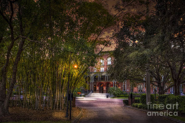 Bamboo Photograph - The Bamboo Path by Marvin Spates