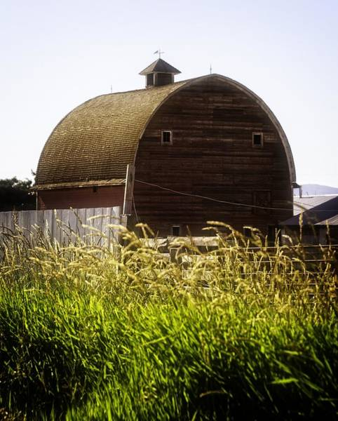 Bonneville County Photograph - The Barn by Image Takers Photography LLC - Carol Haddon