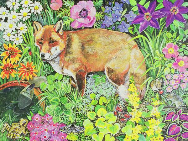 Mice Photograph - The Barnet Fox by Hilary Jones