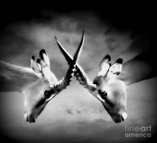 Conceptual Painting - The Battle by Jacky Gerritsen