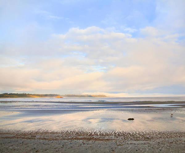 Tofino Wall Art - Photograph - The Beach At Tofino by Theresa Tahara