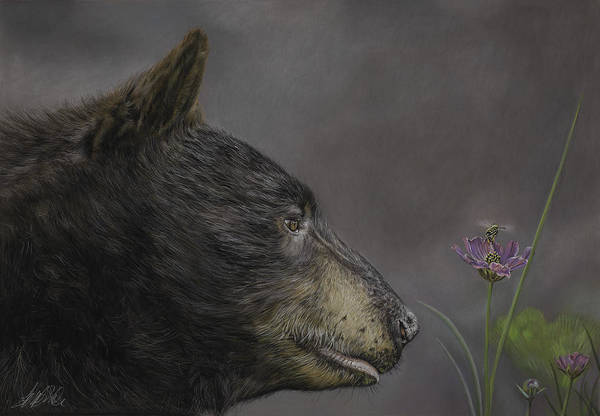 Painting - The Bear And The Bee by Terry Kirkland Cook