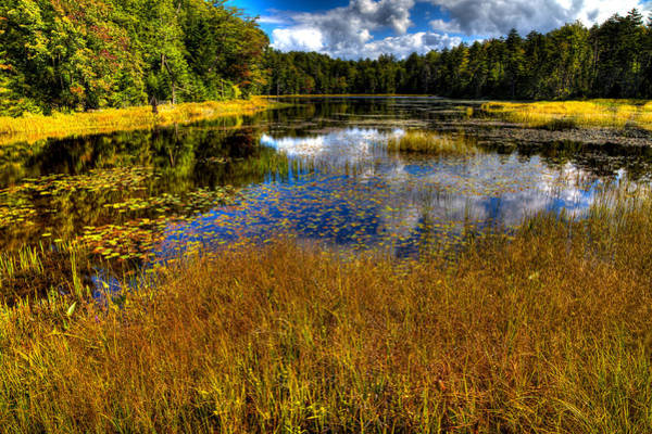 Photograph - The Beautiful Fly Pond Near Old Forge New York by David Patterson